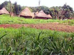 Rural-Nigeria1